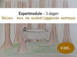 Expertmodule @ Best Western Plus City Hotel Gouda | Gouda | Zuid-Holland | Nederland
